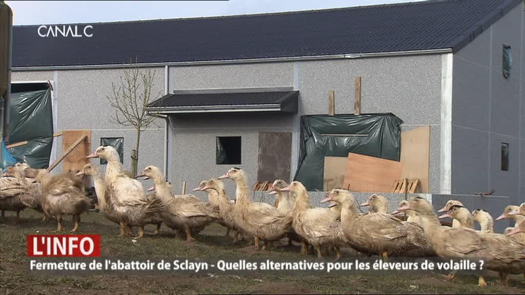 Fermeture abattoir de Sclayn