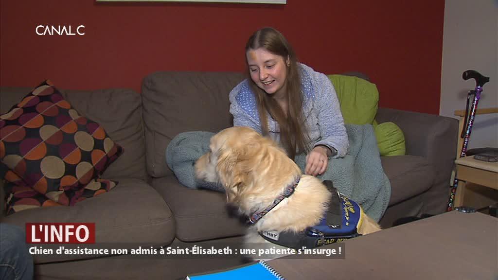 Anima non grata au CHU UCL-Namur : des chiens d'assistance refusés en hospitalisation !