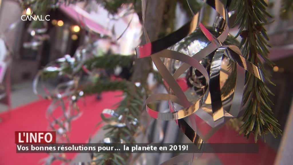 Vos résolutions pour … la planète en 2019 !
