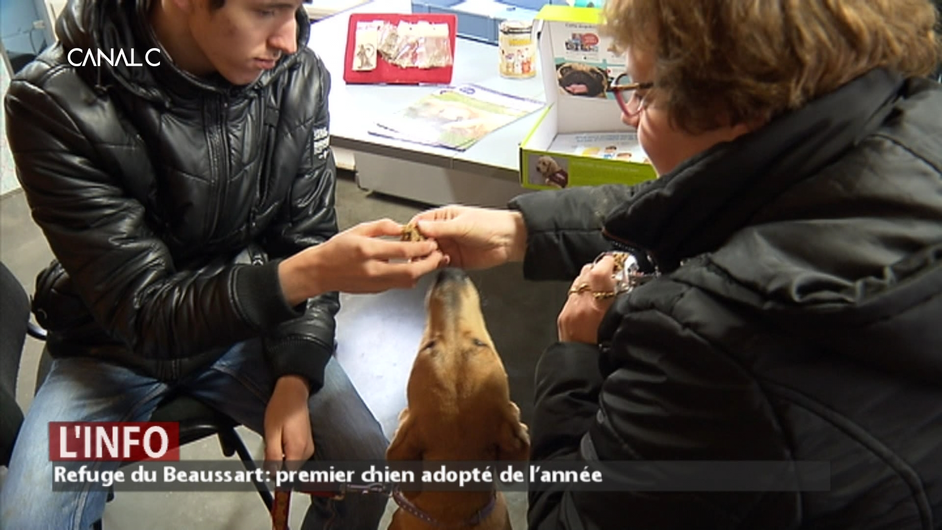 Le premier chien adopté de l'année au Refuge du Beaussart