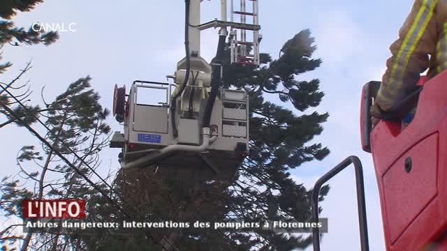 Florennes - Des vents à plus de 100 km/h