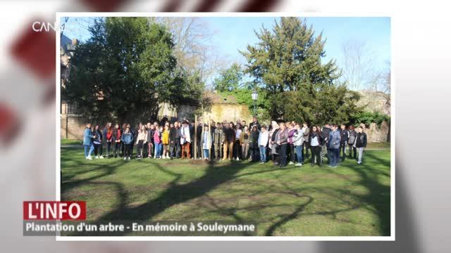 Plantation d'un arbre en mémoire à Souleymane