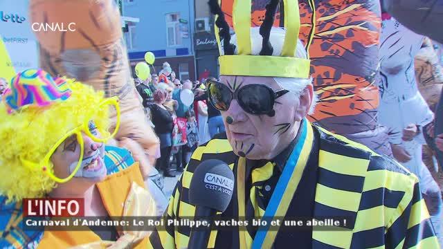 Carnaval d'Andenne : Voldermort, des robots et des chiens-oursons !