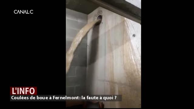 Coulées de boue à Fernelmont: la faute à quoi?