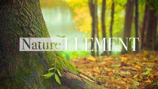 Logo de l'émission Naturellement