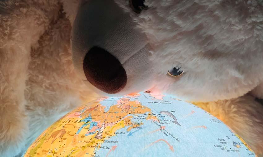 Ours polaire sur monde