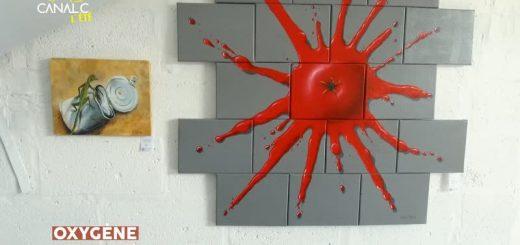 Didier Moens peinture